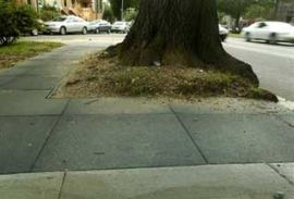 Резиновые тротуары стали популярными в США